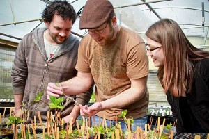Horticulture students at Chemeketa Community College inspect seedlings that will fill hanging flower baskets sold at the Willamette Chapter's annual plant sale, a fundraiser for student scholarships and program improvements.