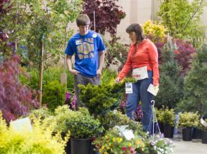 activities_gardenshow