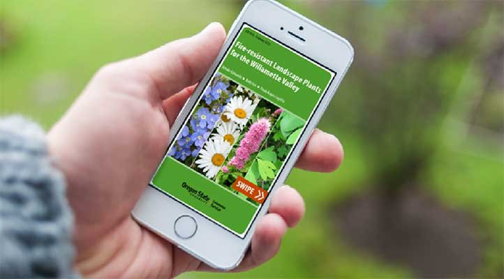 Fire-Resistant Landscape Plants for the Willamette Valley, the mobile application developed by OSU Extension Service, is essentially a gardening pocket guide for your smartphone. Free to download, it lists more than 170 fire-resistant ground covers, perennials, shrubs, woody vines and trees.