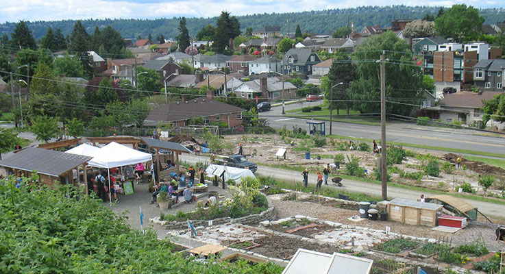 The site of the Beacon Food Forest is a west-facing slope on top of Beacon Hill in Seattle, Washington. The property  is owned by Seattle Public Utilities.   Photo courtesy of beacon food forest