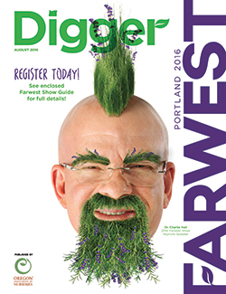 Digger-201608-Cover-250x302px