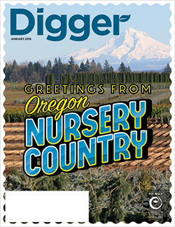 Russell's Nursery and Mount Hood