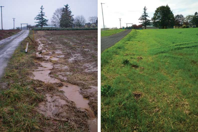 Before and after images of erosion