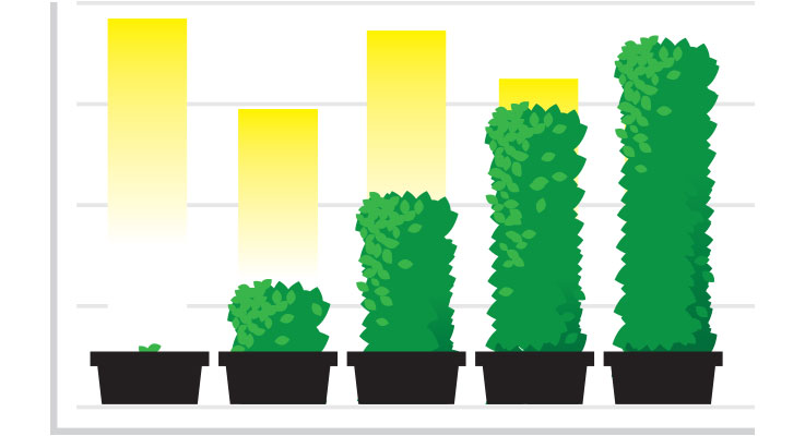ROI Graphic with Plants