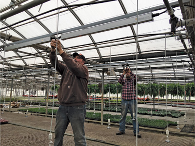 Staff members install LED lights at Peoria Gardens.