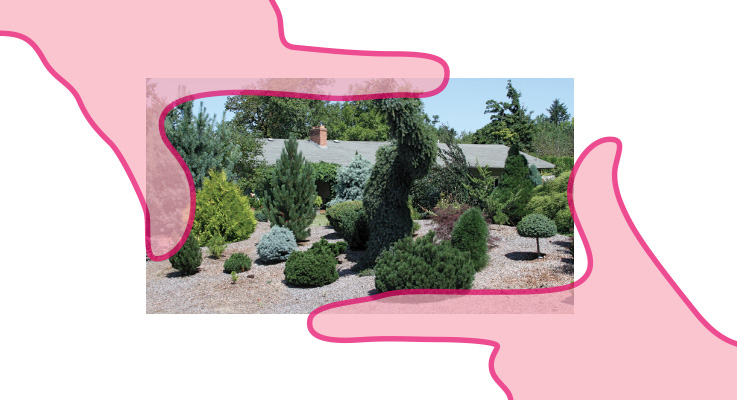 J Farms display gardens