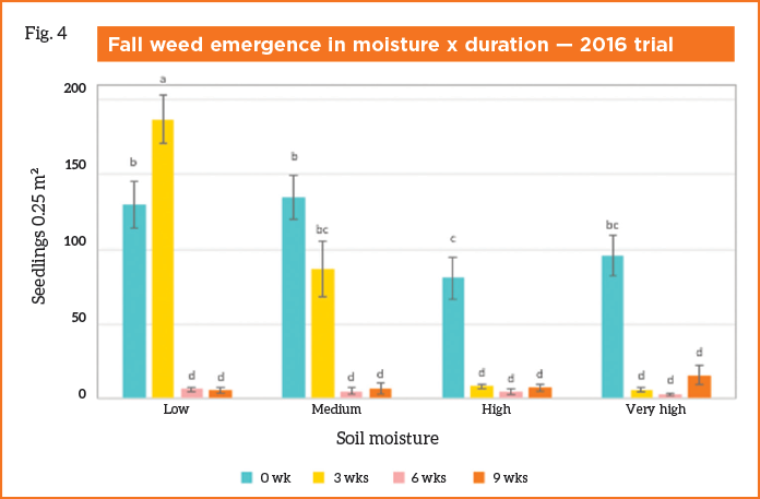 Fig. 4. Fall weed emergence after the 2016 soil moisture and solarization duration trial.