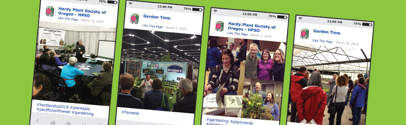 Social media posts from gardening groups reach a large online audience.