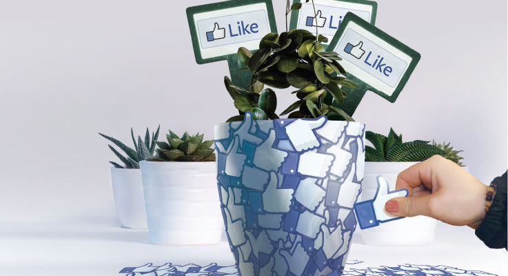 Social networking tips for garden center businesses