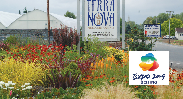 Terra Nova® Nurseries, based in Canby, Oregon, will be the only U.S. company in the International Horticultural Exhibition in Beijing, China. Photo by Curt Kipp