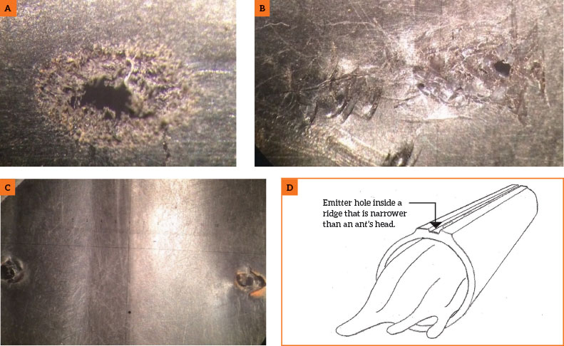 Figure 1. Damage with frayed edges typical from insects (A), potential rodent damage with scratch marks (B), mechanical puncture (C). photos by C. Alba
