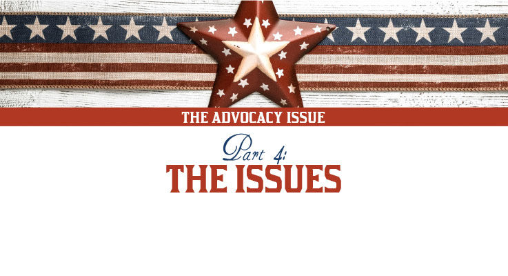 The Advocacy Issue, Part 4: The issues